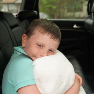 Lurera Pillows